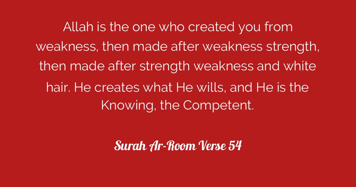 Surah Ar-Room Verse 54 | Tafsirq com