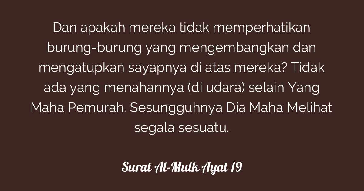 Surat Al Mulk Ayat 19 Tafsirqcom